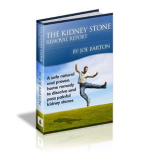The Kidney Stone Removal System by Joe Barton