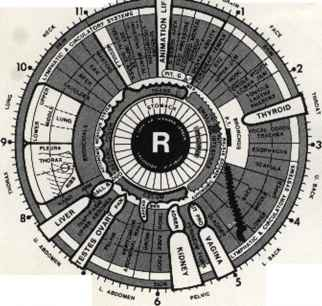 Basic Iridology Charts