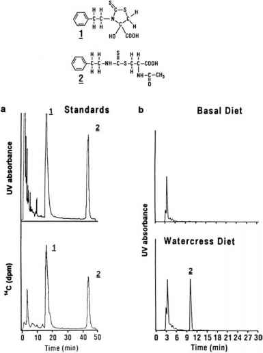 Hplc Detection Degradation Thiols